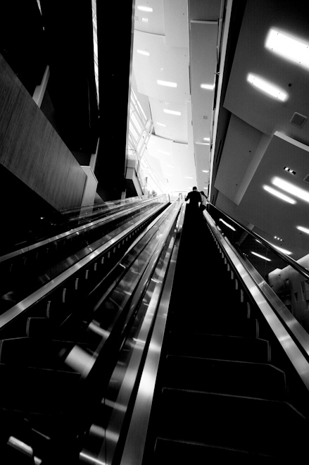 Aria escalator
