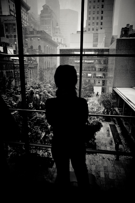 <br /> Looking Out from MoMA