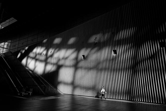 <br /> Tokyo Shadows